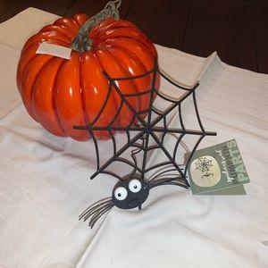 Spider Web Pumpkin Part